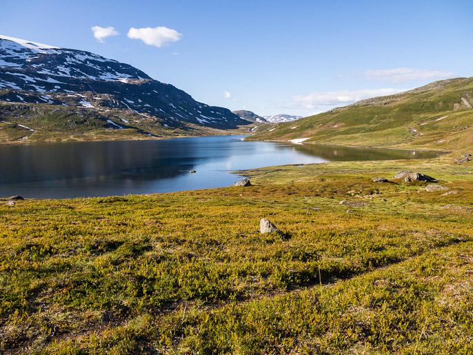 Leppoisaa maastoa kävellä järven pohjoispäätä kohti, pieniä lentäviä olentoja oli seurana. Skuokejaure, Ruotsi