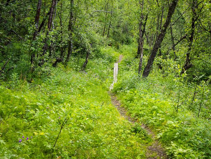 Abiskosta kun lähtee kiertämään Torniojärven luoteispäätä, käy kulkija Rallarvägen-reittiä pitkin, joka on oikein leppoisa kulkea ainakin sinne asti, mistä Kalottireitti siitä erkanee. Abisko, Ruotsi