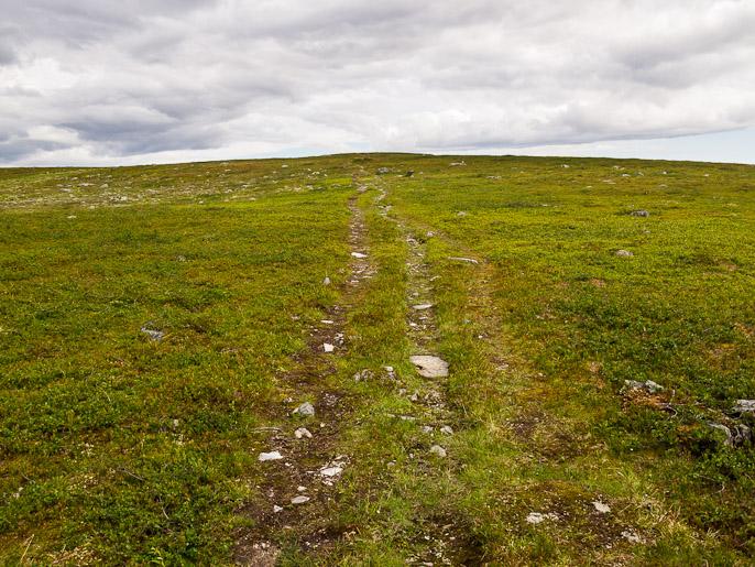 Vähemmän jännittävää polkua ja pitkää loivaa nousua. Adjavardu, Norja