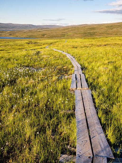 Nämä taisivat olla toiseksi viimeiset pitkospuut vaelluksella, norjalaiset kun eivät näitä rakenna kuten Suomen ja Ruotsin vaellusreiteillä. Masetvarri, Suomi