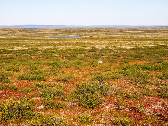 Mönkijäuralta takaisin poluttomalle maalle. Biellogielas, Norja