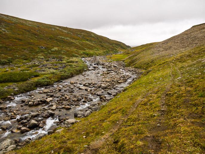 Ylöspäin joenvartta ja poropolkua pitkin. Gottetjohka, Norja