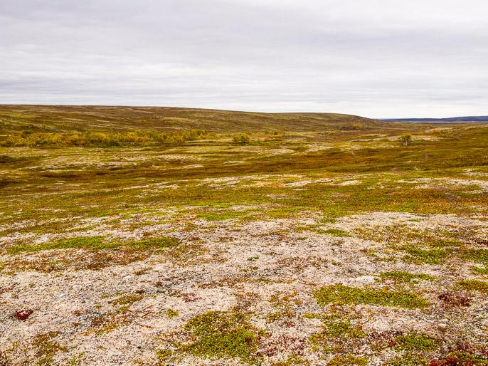 Helppoa maata kävellä. Gurtejohka, Norja