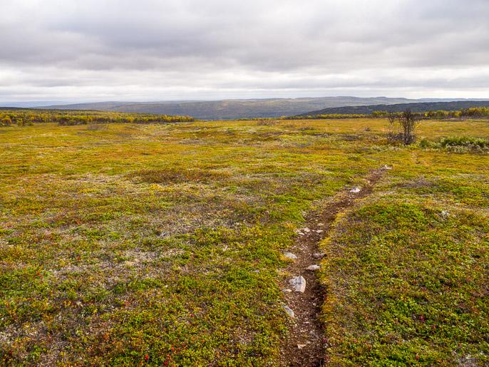 Polkua alaspäin kohti Tanaa. Sieiddajohskaidi, Norja